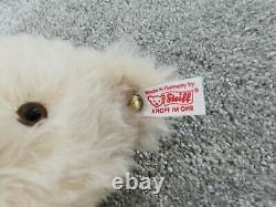 STEIFF Limited Edition RHS Chelsea FLOWER SHOW Teddy Bear Gold Button displaybox